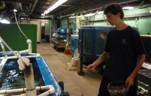 Action shot of Josh feeding the fish